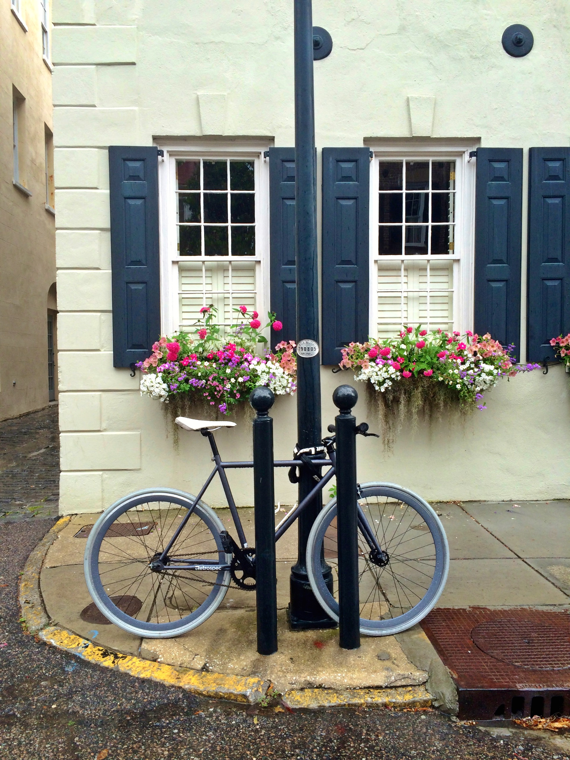 """HONORABLE MENTION Professional category: Charleston Charm by Laura Hasemeyer; """"Only the most charming city in the world! State Street, Spring 2014"""""""