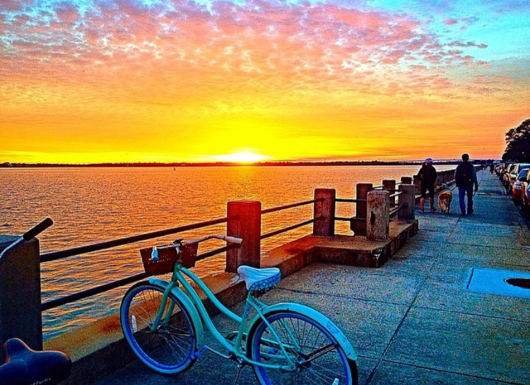 """HONORABLE MENTION Amateur category: Battery Sunset by Emily Deal; """"I took this photograph (with my iPhone) on January 29, 2015 at the Battery around 5:45 p.m. My roommate and I stopped our bike ride to admire the beautiful sunset. We enjoy taking bike rides to the Battery, even during cold weather, because Charleston's historic architecture never gets old! The Battery is the perfect setting to watch the sunset. You never see the same sunset twice, so I'm glad I captured this particular one."""""""