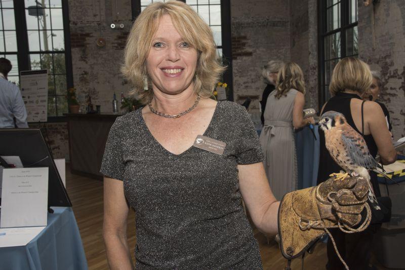 Kathie Davidson minds the American kestrel.