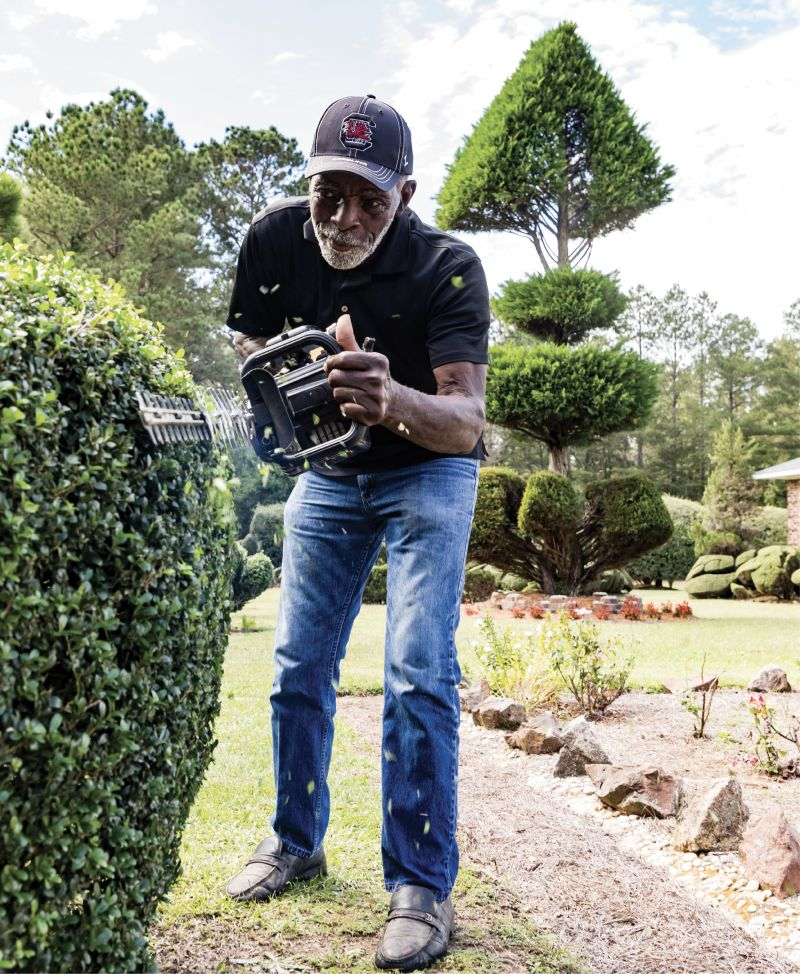 """IN SHAPE: Wielding his hedge trimmer, Fryar demonstrates his craft of creating living sculptures. The """"fish bone"""" towering in the distance was fashioned from a Leyland cypress that he planted just after Hurricane Hugo in 1989."""