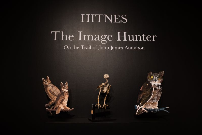 The entrance to The Halsey Institute's latest exhibit welcomes patrons with original Hitnes illustrations.