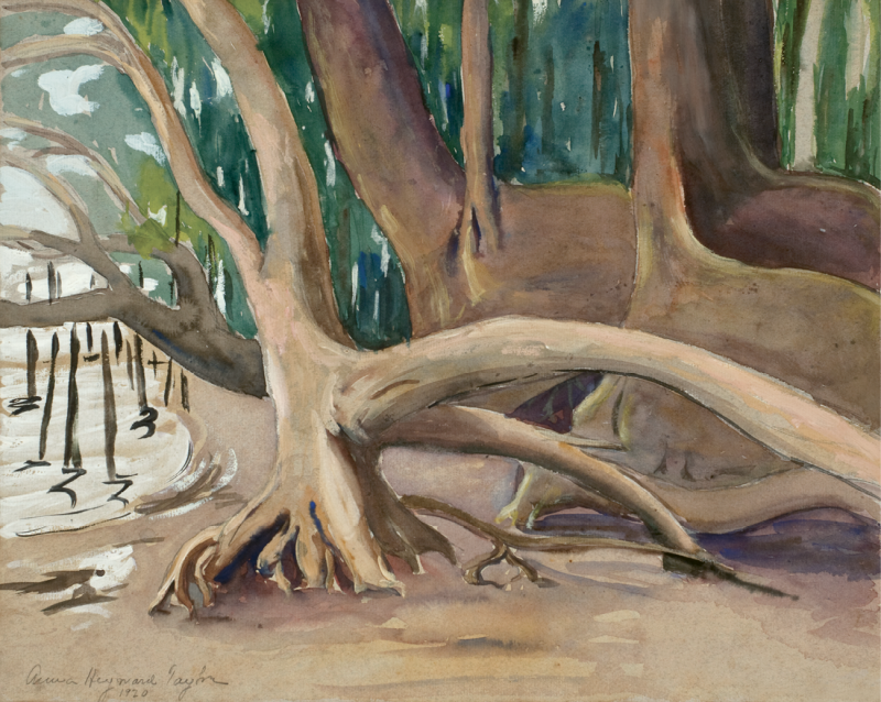 Untitled (Tree Trunks), a 1920 watercolor, represents the artistic freedom she experienced on her second visit to the colony..